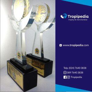 Trophy Fiberglass
